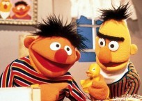 Misuse of 'Bert and Ernie' Akin to Child Endangerment