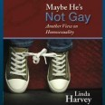 Maybe He's Not Gay Flushes Out Some Real Haters on Amazon