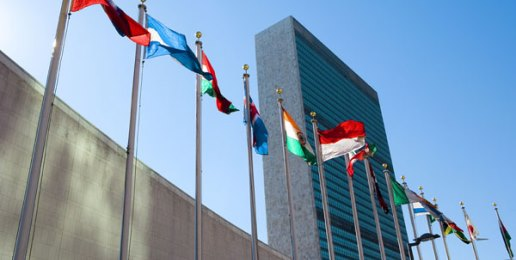 Warning Goes Forth, Again, Over Ratifying UN Treaty
