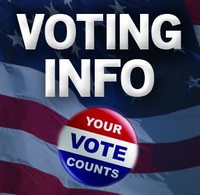 VotingInfo