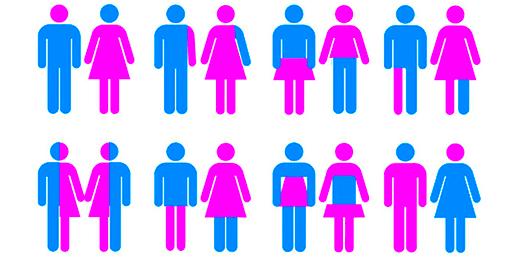 """Transgender"" Tyranny"
