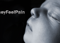 Sparing 18,000 Babies' Pain and Suffering