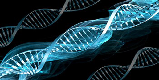 Strong Doubt Cast On Another 'Gay Gene' Study