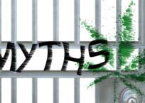 Cannabis Myths Exposed