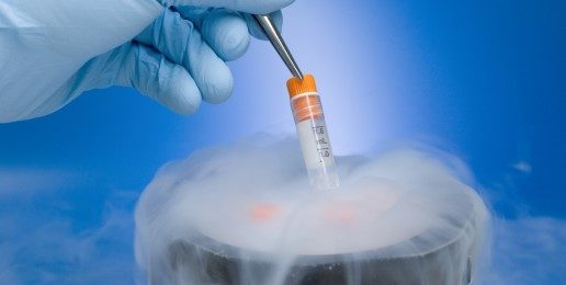 Frozen Embryos: A Matter of Life or Death