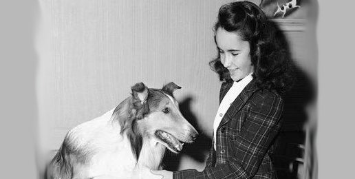 From 'Lassie to 'Game of Thrones': What Has Become of America?