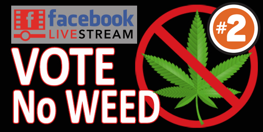 Webinar #2 on Legalization of Marijuana in Illinois