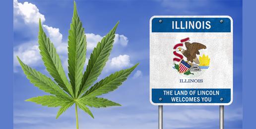Marijuana will bring harm to Illinois