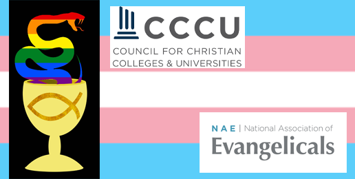 Dr. Robert Gagnon's Response to Evangelical Leaders' Compromise with LGBT Activists