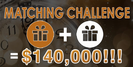 Announcing IFI's End-Of-Year Matching Challenge