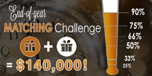 Our Challenge by Midnight, December 31st!