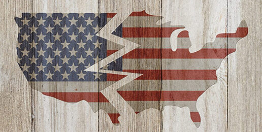 Why Many Americans Want to Secede (pssst, look at the Bidens)